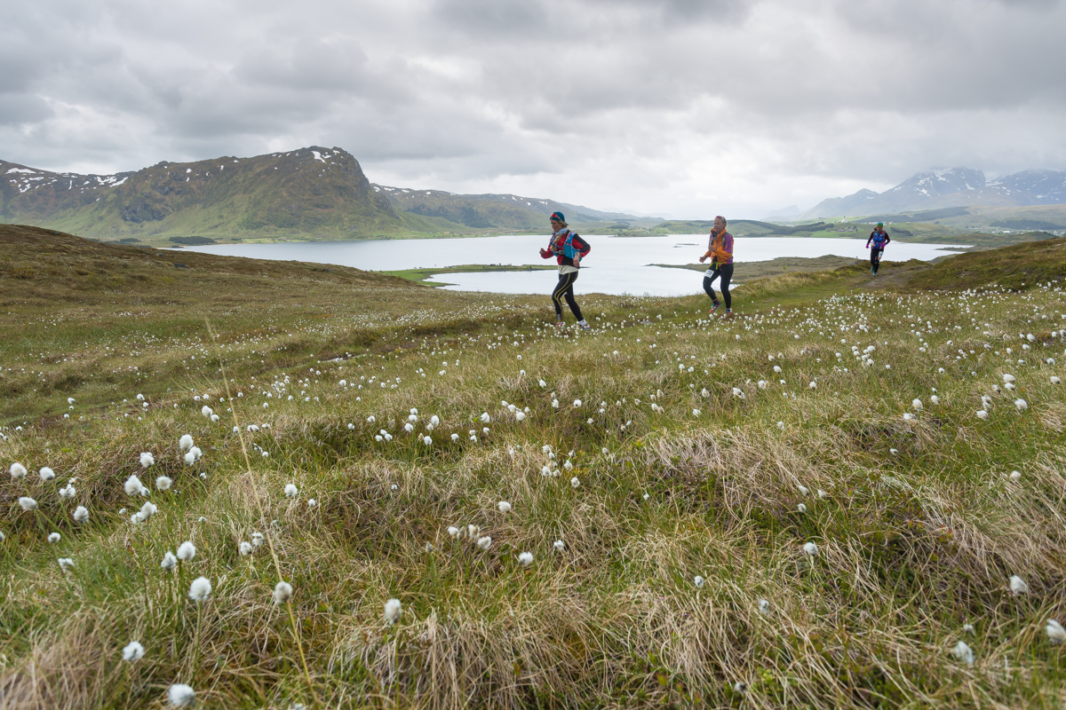 Runners leaving behind Trovdalshalsen, during Lofoten Ultra Trail 2016.