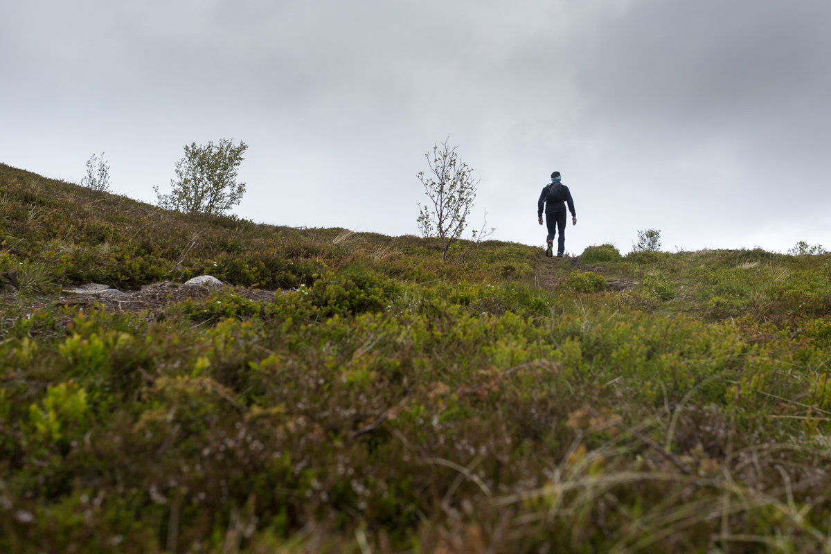 Runner in the Lofoten Ultra Trail 2016.
